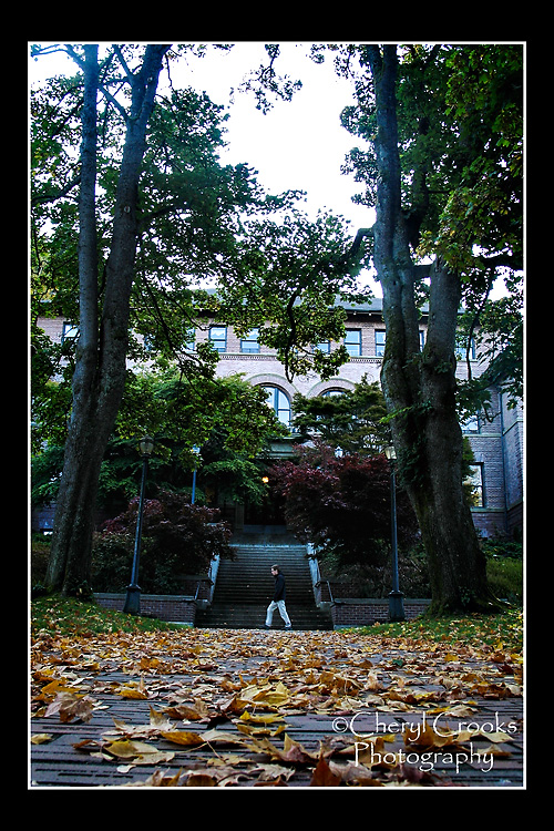 The brick walkway leading to the WWU Administration building, affectionately known as 'Old Main' was strewn with leaves on a recent autumn morning.