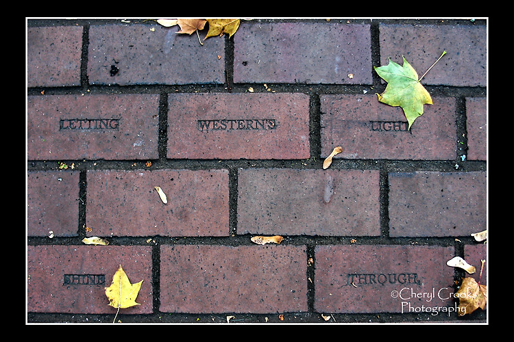 """The slogan """"Let Western's Light Shine Through' is embedded into the brick walkway leading from Old Main."""