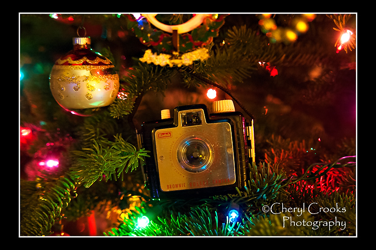 My first camera was a Brownie like this one.  The Brownie made holiday picture-taking easy.