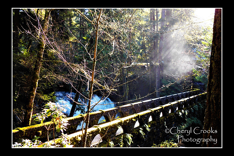 The morning light streams onto the gushing water of Whatcom Falls.