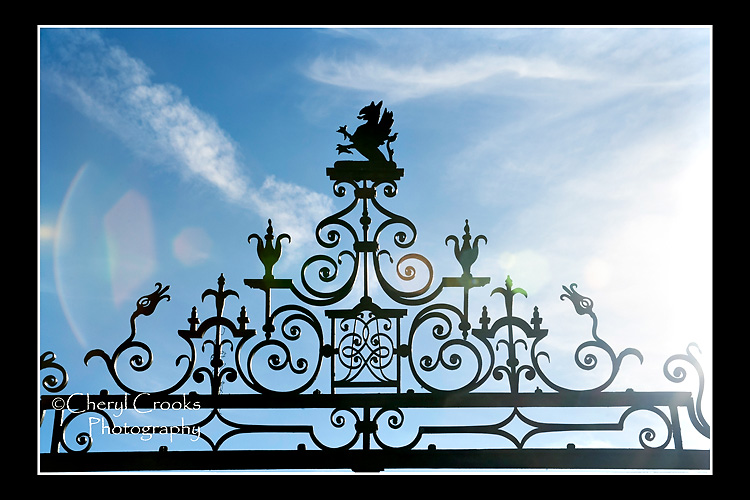 Intricate scrolling in the ironwork graces the top at the front gate at Evergreen.