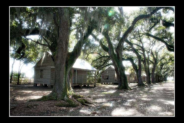 The 22 cabins that once served as slave quarters line the plantation's oak allee.