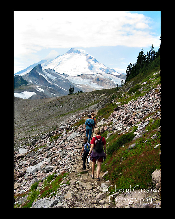 Mount Baker's majestic peak is fully in view from the Ptarmigan Trail.