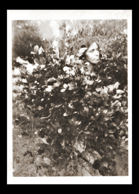 Mmy Grandmother's face is peeking out from the bush like a flower in this snapshot but I don't know the circumstnaces behind it. A mystery!.
