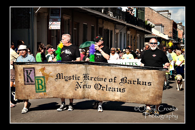 The Mystik Krewe of Barkus banner bearers begin the afternoon parade.