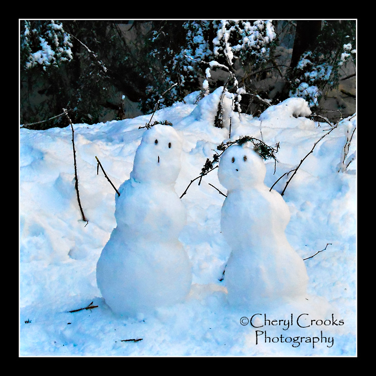 Just like in the song, we encountered a snowman and snowwoman as we snoiwshoed through the woods.