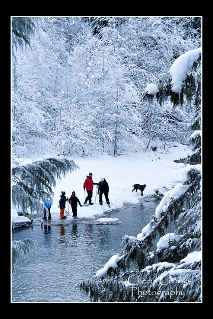 A family enjoys a romp in the snow by the river.