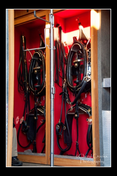 The Clydesdales' collars and harnesses hang in the tack room of the semi-trailer.