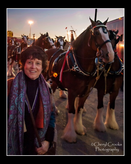 Cheryl gets a close up look at Budweiser's Clydesdales as they get ready to join the parade.