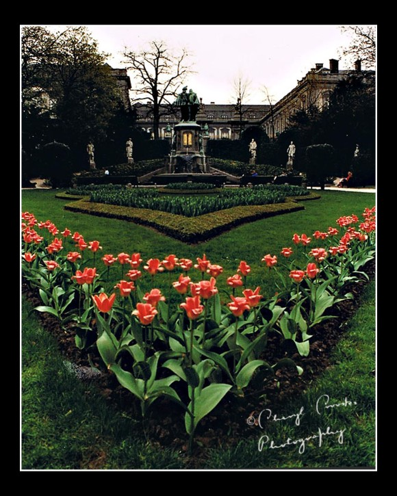 The tulips in the park of the Petite Sablon were just blooming when I first visited Brussels.